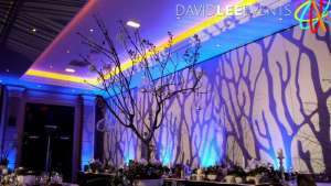 Image projection and uplighting hire